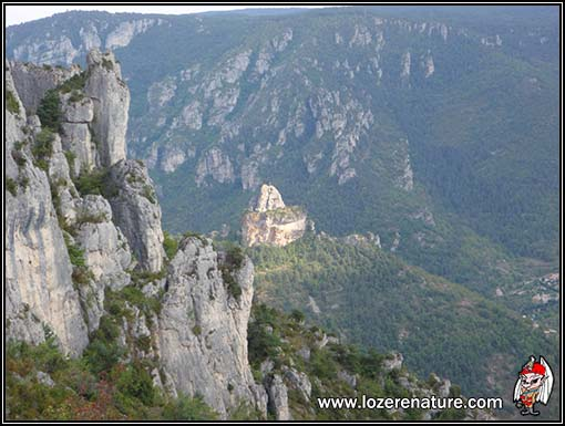 lozere nature paysage grands causses
